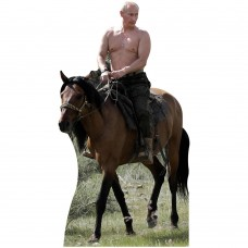 Shirtless Putin Riding Horse