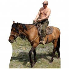 Shirtless Putin Riding Horse Side View